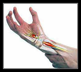 ống khối xương cổ tay