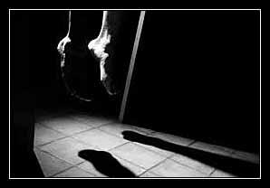 tự tử