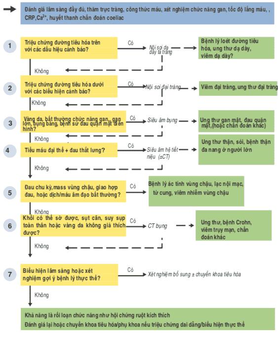 Đánh giá từng bước đau bụng cấp phần 4