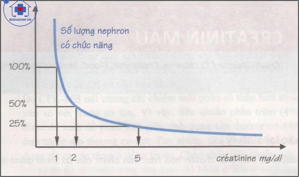 Tương quan giữa số nephron có chức năng và giá trị của Creatinin huyết thanh