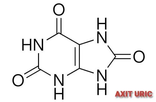 cấu trúc hóa học acid uric