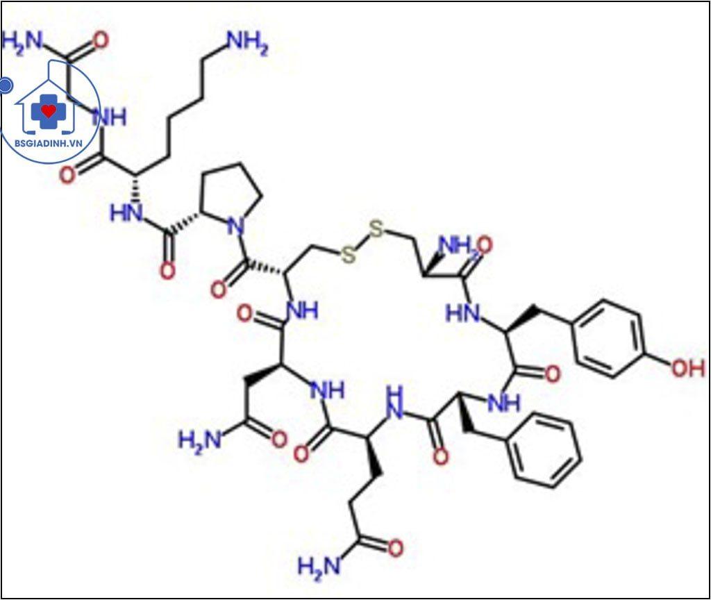 cấu trúc ADH