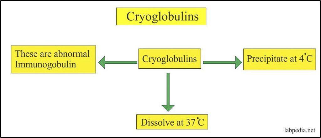xét nghiệm Cryoglobulin