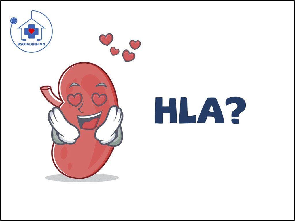 xét nghiệm HLA
