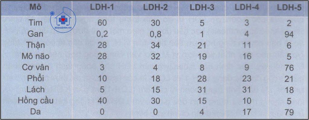 Phân bố hoạt độ % của các isoenzym của LDH trong các mô