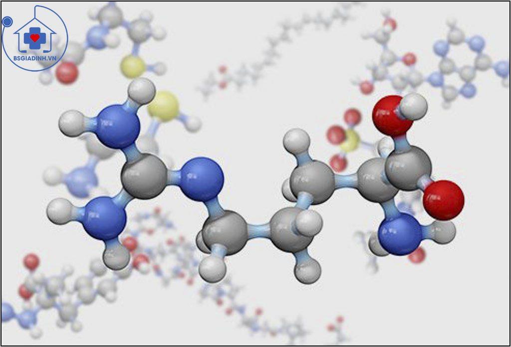 xét nghiệm Homocysteine