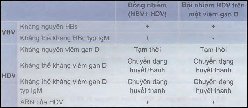 Chẩn đoán nhiễm virus viêm gan D