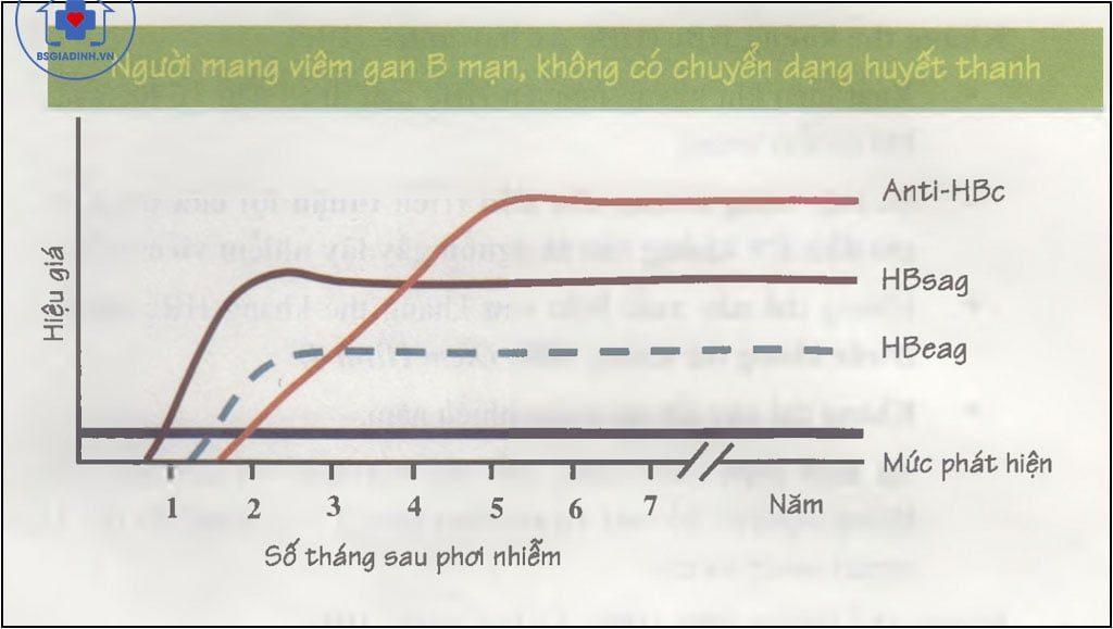 Diễn biến theo thời gian của các kháng nguyên và kháng thể viêm gan B